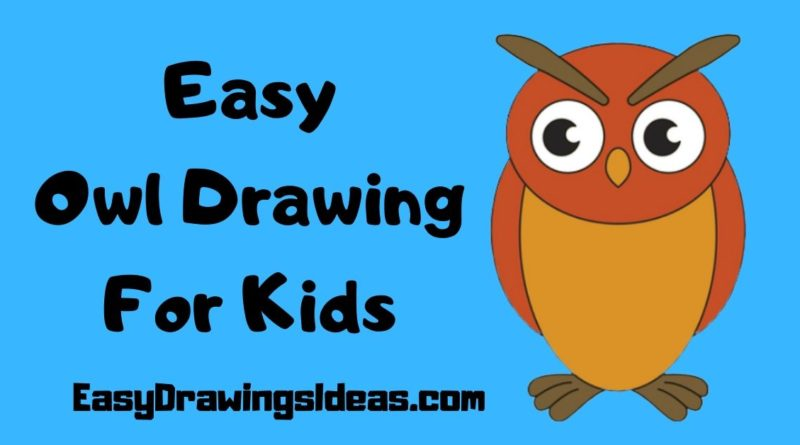 How to Draw an Owl For Kids step by step