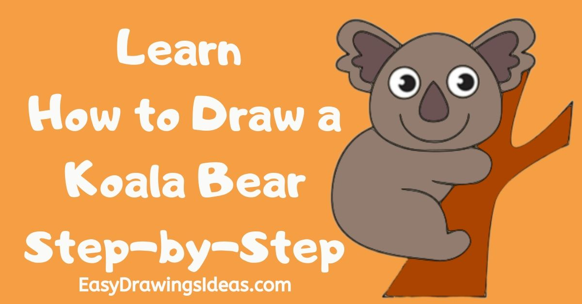 how to draw a koala for kids