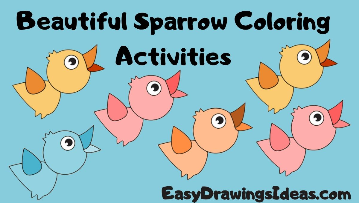 Beautiful Sparrow Coloring Activities for kids step by step drawings