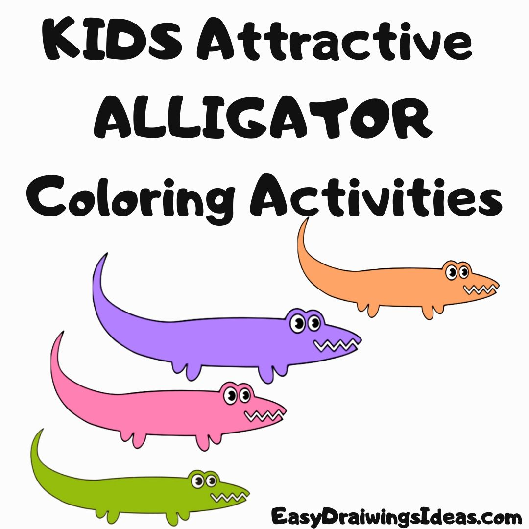 How to draw an alligator for kids Beautiful alligator Coloring Activities