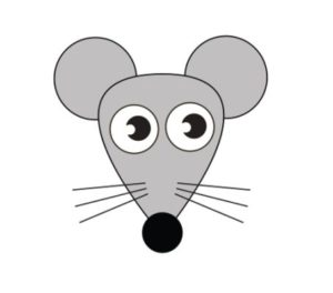 Learn How to draw a rat step by step