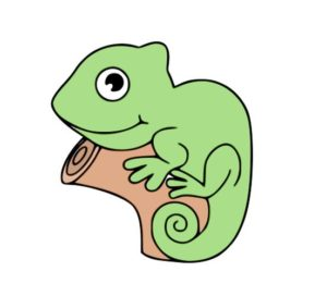 Learn how to draw iguana For kids