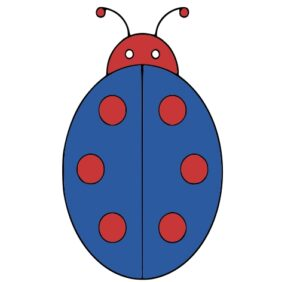 learn How to draw lady bug step by step